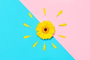 Summer, spring, minimalism concept.