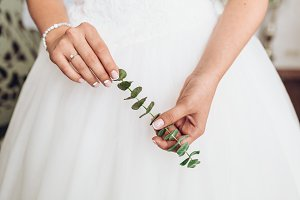Elegant bride holding green branch in tender hands.