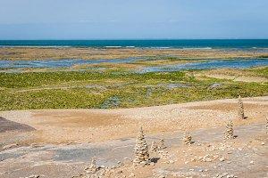 Atlantic coast on the island of Ile de Re .