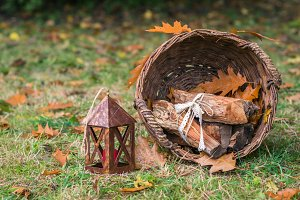 still life with a basket of logs autumn