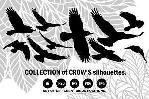 Collection of 10 crow's silhouettes.