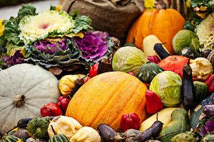 Multicolored bright autumn vegetable