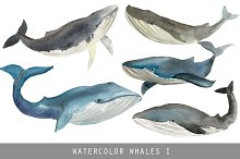Watercolor whales - Nautical images