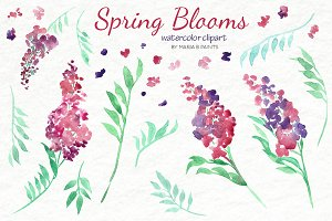 Watercolor Clip Art - Blooms