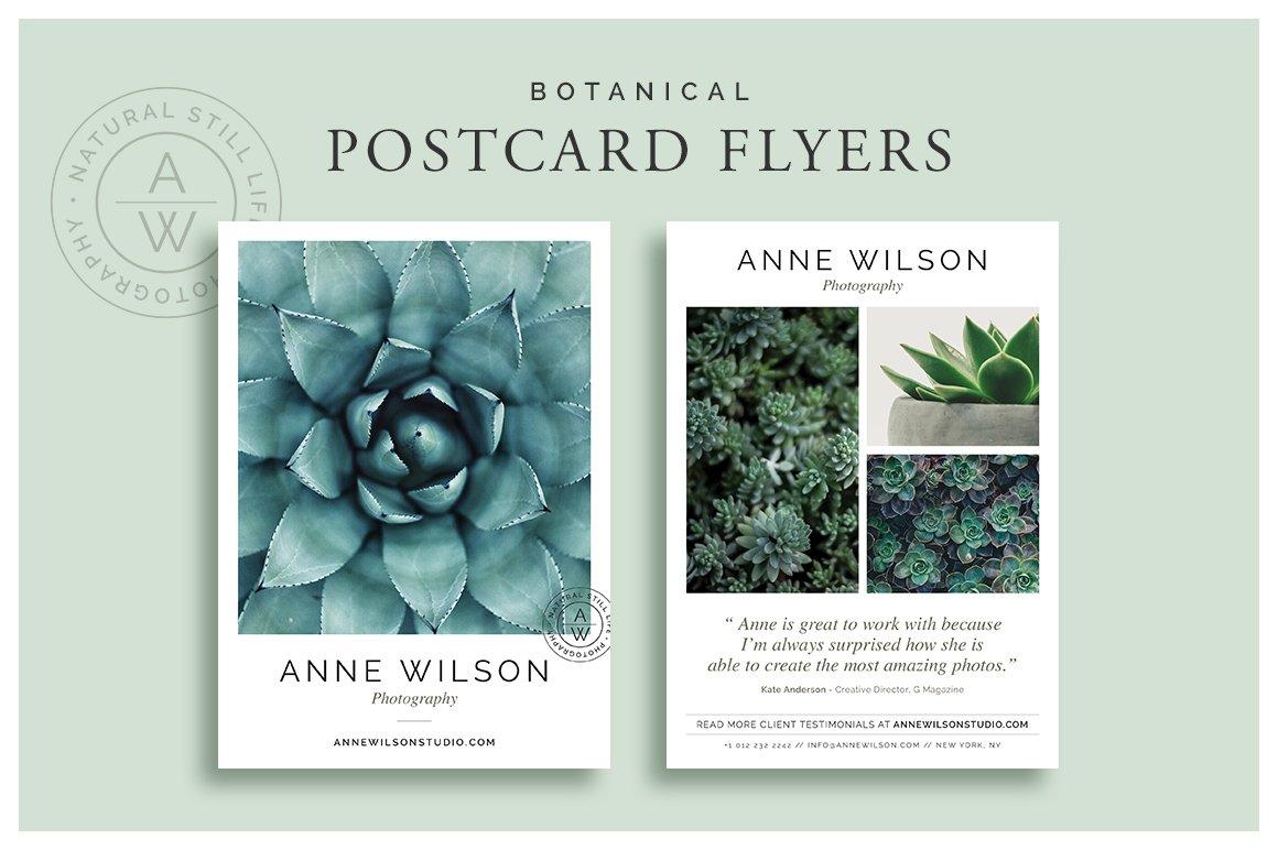 Botanical Postcard Flyers Flyer Templates Creative Market - Postcard flyer template