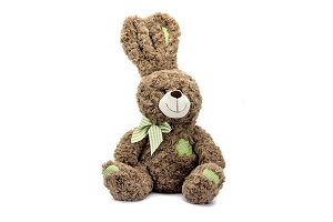 Children's Teddy