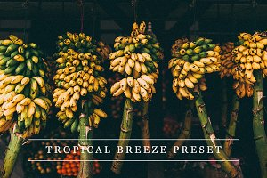 Tropical breeze - Lightroom preset
