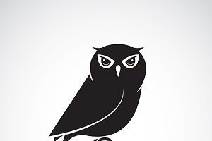 Vector of an owl design.