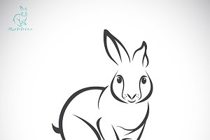 Vector of a rabbit design.
