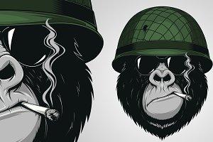 Gorilla in a soldiers helmet
