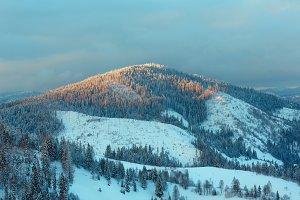 Evening winter Carpathian Mountain