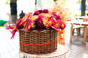 Flowers in a basket.