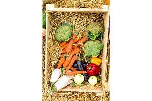 Set vegetables.