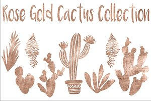 Rose gold cactus collection