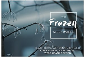 Frozen Vol.1