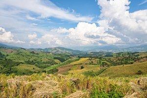 Farmland in northern Thailand