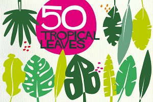 50 tropical leaves in vector
