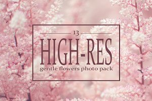 13 floral backgroungs