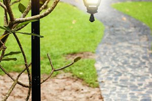 Beautiful lantern on the road