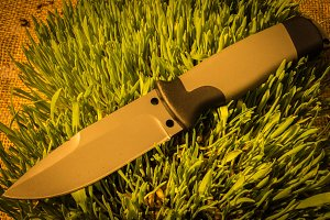 Fixed knife on grass. Warm teperature.