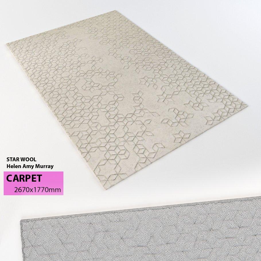 carpet 65