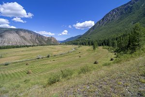 Meadow with haystacks in mountains.