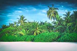 Retro stylized image of tropical island with coconut palm trees. Maldives
