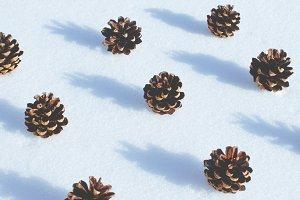 pinecones and snow