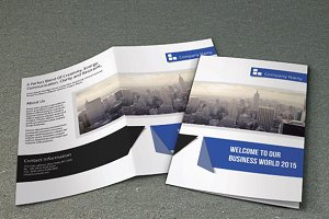 Multipurpose business brochure-V63