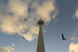 TV Tower or Fernsehturm with birds at sunset, Berlin, Germany