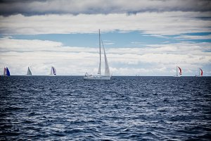 Yacht Regatta at the Adriatic Sea