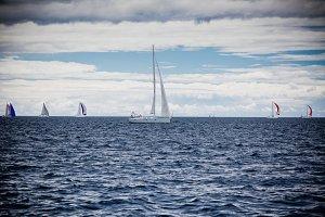 Yacht Regatta at the Adriatic Sea