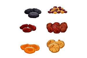 Dried fruits or berries isolated vector icons