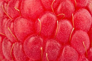 Raspberry closeup texture background