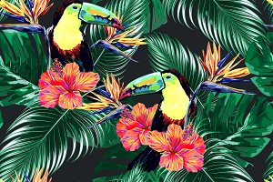 Toucan,tropical leaves pattern