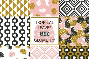 Tropical leaves and geometry