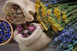 Medicinal herbs, mortar and bags