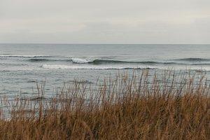 Ocean and Shore #12