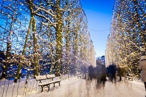 People walking in winter park decorated with lights. Park Oliwski, Gdansk, Poland