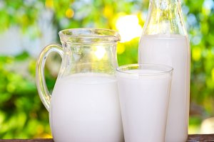 Milk in various dishes