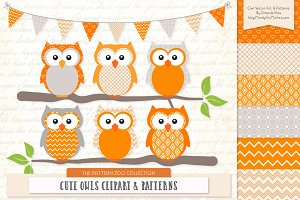 Owls Clipart & Patterns in Tangerine