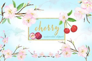 Cherry. Waterolor clipart.