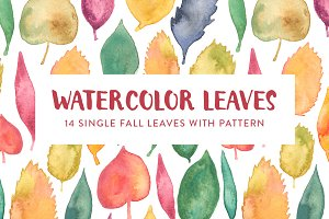 Watercolor Leaves & Seamless Pattern