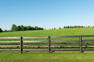 Horse farm with black wooden fence