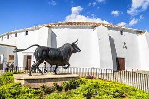 Bull in Ronda bullring, Malaga
