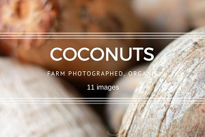 Coconuts and Palm Fronds set
