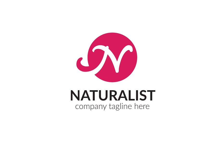 Naturalist letter n logo logo templates creative market pro previous spiritdancerdesigns Choice Image