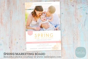 IE002 Spring Marketing Board