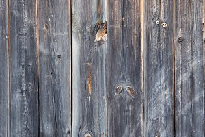 Wooden background of old fence