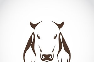 Vector of cow head.